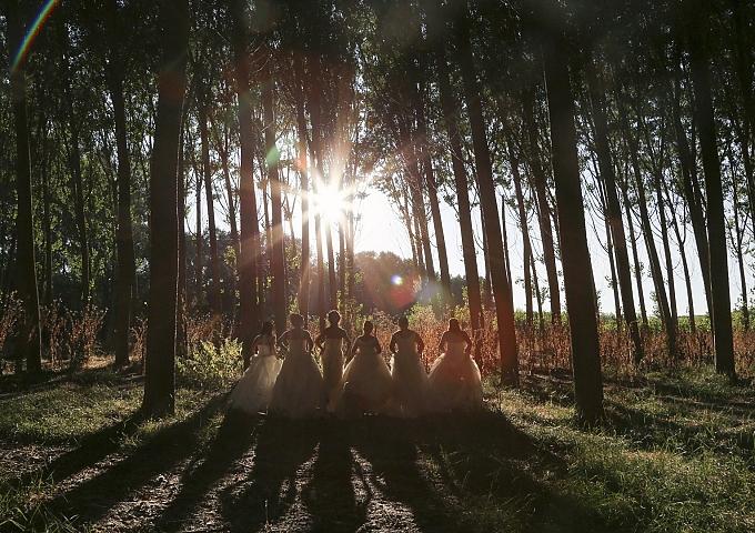Seis novias y un destino ¡Tener un recuerdo inolvidable!
